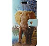 Orange Elephant gemalt PU-Telefonkasten für iphone5 / 5s
