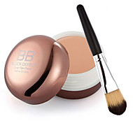Pro Conceal HD Makeup Cosmetics Concealer Corrector Brush + Powder Brush