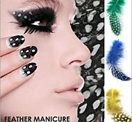 5PCS Real Feather Decals DIY Decorations Nail Art Tools