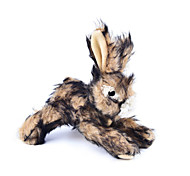 Cat Toy Dog Toy Pet Toys Plush Toy Squeak / Squeaking Rabbit Textile Brown