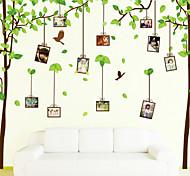 Botanical Memory Tree Photo Wall Stickers Romance / Fashion  Wall Stickers Plane Wall Stickers,PVC 60*180CM
