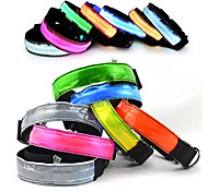 New fashion nylon webbing LED dog collar New Material super bright light guide flat fiber pet collars