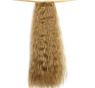 Wig Golden 50CM Water Synthetic High Temperature Wire Hot Corn Horsetail Color 27X