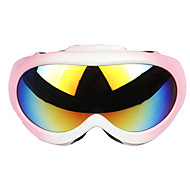 High Quality Men And Women Professional Double Layer Anti Fog Lens Ski Glasses