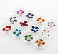 12 * 5 Stück trockenen Blütenblume für Nagel