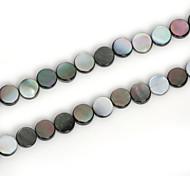 Beadia 8mm Round Natural Black Lip Sea Shell Beads(38cm/approx 46pcs)