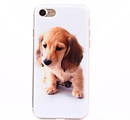 Para Funda iPhone 7 / Funda iPhone 7 Plus IMD Funda Cubierta Trasera Funda Perro Suave TPU Apple iPhone 7 Plus / iPhone 7