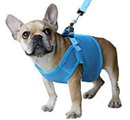 Solid Colors Ventilate Mesh Safety Dog Belt Harness for Pets Dogs with Leash