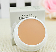 Concealer/Contour Dry Cream Concealer Face Natural China