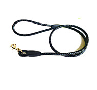 Dog Collar Safety Solid Black Nylon