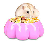 Rodents Rabbits Chinchillas Bowls & Water Bottles Waterproof Plastic Random Color