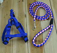 The New Pet Collar Traction With Traction Rope Pet Dog Collar