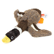 개를위한 pethingtm 찍찍 거리는 오리 장난감