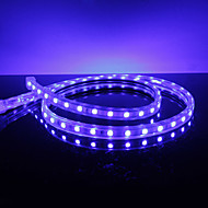 Waterproof 10W / M 5050 SMD Blue Light LED Strip Lamp (220V, lengte instelbaar)