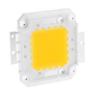 DIY 80W 6350-6400LM 2400mA 3000-3500K Warm Modulo luce bianca LED integrato (30-36V)