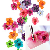 36PCS Colorful Dried Peach Blossom Nail Art Decorations
