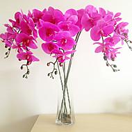 pu emulationalmassage vlinder orchidee