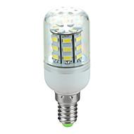 E14 3.5W 400lm 6500k 30-SMD 5730 ha condotto la lampada fredda mais luce bianca (220v ~ 240v)