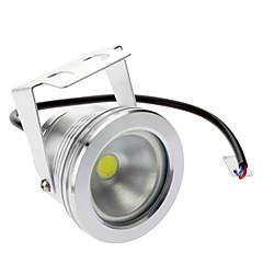 Αδιάβροχη 10W 800-900LM 6000-6500K Φυσικό Λευκό LED Λάμπα Προβολέα (DC/AC 12V),