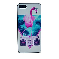 Flamingo Pattern Hard Case for iPhone 5/5S