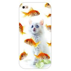 Teste padrão do gato de volta caso difícil para iPhone 5 / 5s