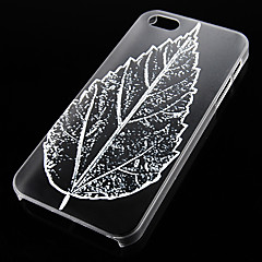 Leaf Pattern Transparent Back Case for iPhone5/5s