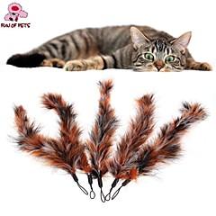 고양이 / 개 반려동물 장난감 티저 / 깃털 장난감 캔디 멀티컬러 직물