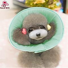 divertimento di Pets® carino spugna animali protezione collare per uso medico sanitario (taglie e colori assortiti)