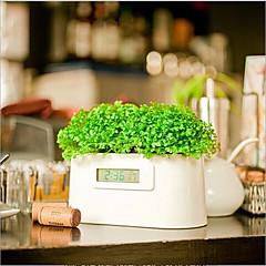 mikro kraftværker kan generere elektricitet plante super Meng ur alarm kartoffel gård elproduktion plante ur
