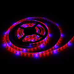 5m morsen®5m 36w hydroponischen Systeme LED-Anlage wachsen Licht LED-Streifen volles Spektrum wachsen Box mit Fahrer wachsen