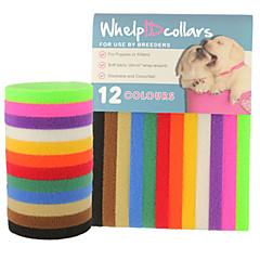 Cat Dog Collar ID Tag Adjustable/Retractable Solid Rainbow Nylon