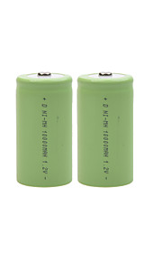 10000mAh 1.2V d-type oplaadbare NiMH-batterijen (2 stuks)