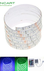 5m 75W 300x5050 rgb SMD LED DC12V IP68 vanntett stripe lys + 24key fjernkontroll rgb + 12v 2a makt AC100-240V