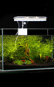 Aquarium LED Lighting White Blue 8.5W LED Lamp AC 100-240V