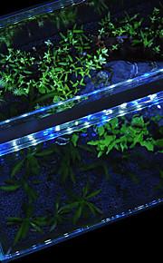 Akvarier LED-belysning Hvidt Blå Med switches LED lampe 220V