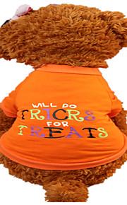 犬用品 Tシャツ 犬用ウェア 夏 文字&番号 ファッション