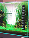 Digital Thermometer Sticker for Fish Tank Aquarium