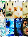 Cute Animals Series Back Case for iPhone5/5S(Assorted Color)