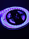5M 72W 300x5050SMD Blue Light LED Strip Lamp (DC 12V)