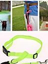 Gatos / Caes Trelas Prova-de-Agua / Corrida / Sensor Vermelho / Preto / Verde / Azul / Rosa / Amarelo / Laranja Nailon