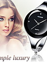 Women's Watch Casual Big Minimalism Dial Alloy Bracelet
