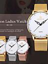 Skone® Women\'s White Dial Gold Mesh Band Quartz Watches