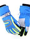 Ski Gloves Women\'s Men\'s Unisex Activity/ Sports Gloves Keep Warm Waterproof Windproof Hewolf Ski & Snowboard CanvasCycling Gloves/Bike