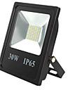 IP65 Waterproof Spotlight Lamp 30W 60LED 5730SMD Garden Outdoor Led Floodlight lighting(DC12-80V)