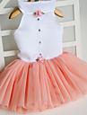Коты Собаки Платья Одежда для собак Лето Весна/осень Принцесса Милые Оранжевый Пурпурный Зеленый Розовый
