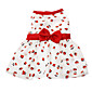 Cat / Dog Dress White Dog Clothes Summer / Spring/Fall Fashion